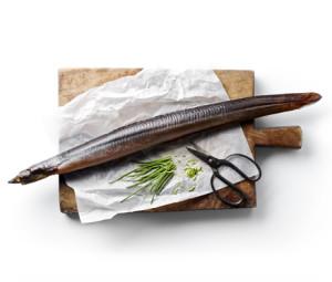 Helrøget-ål